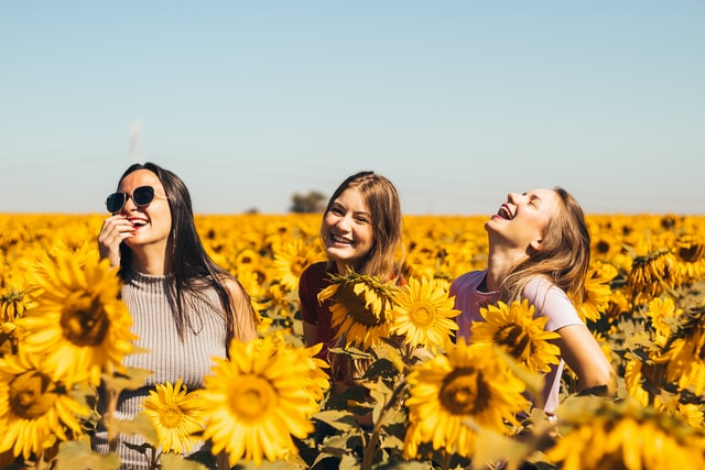 Image of women in a sunflower field